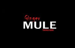 The Ginger Mule